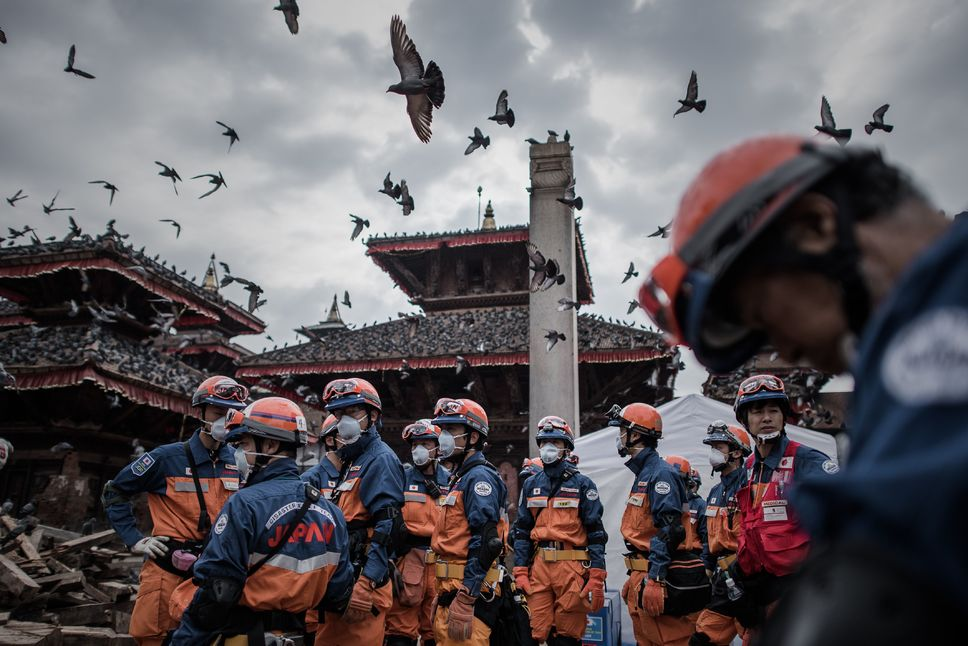 nepal earthquake buzzards vultures